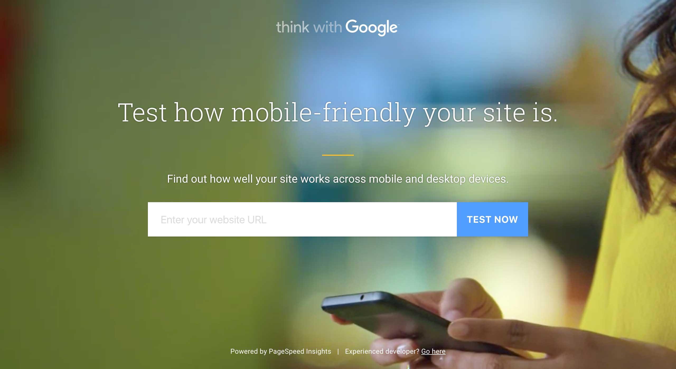 Google Site Check